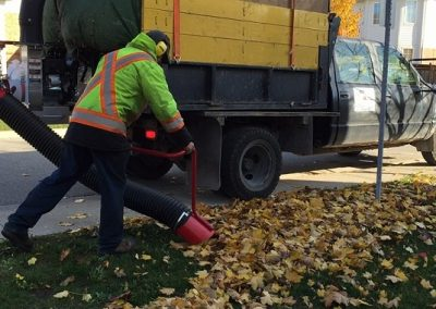 Fall Leaf Removal