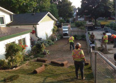 Lawn Maintenance 5